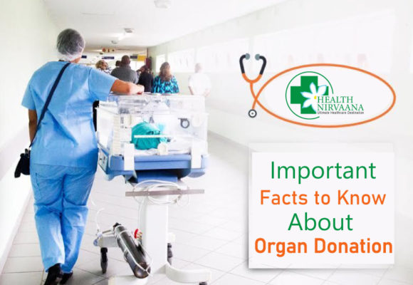 Important Facts to Know About Organ Donation